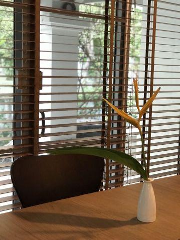 z drewna żaluzje w biurze
